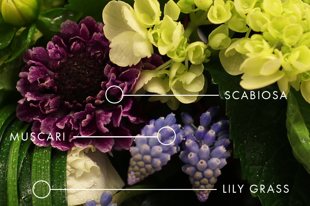 Photo of Scabiosa, Muscari and Lily Grass